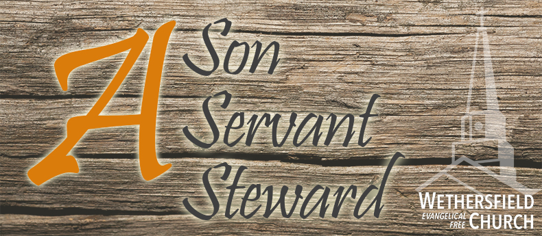 Son Servant Steward Final Blog Header